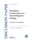 Flood Mitigation Strategy